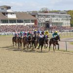 A look ahead to the All Weather season with DG Tips