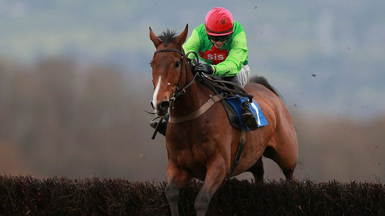 Buywise - Can he place at Cheltenham, again!?