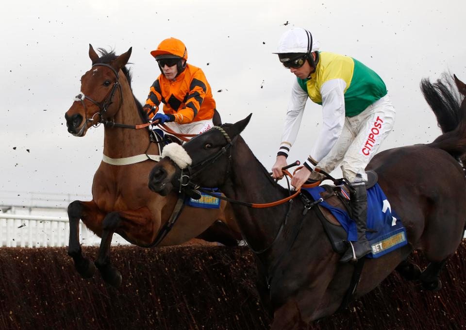 Two Superstars jump together at Cheltenham